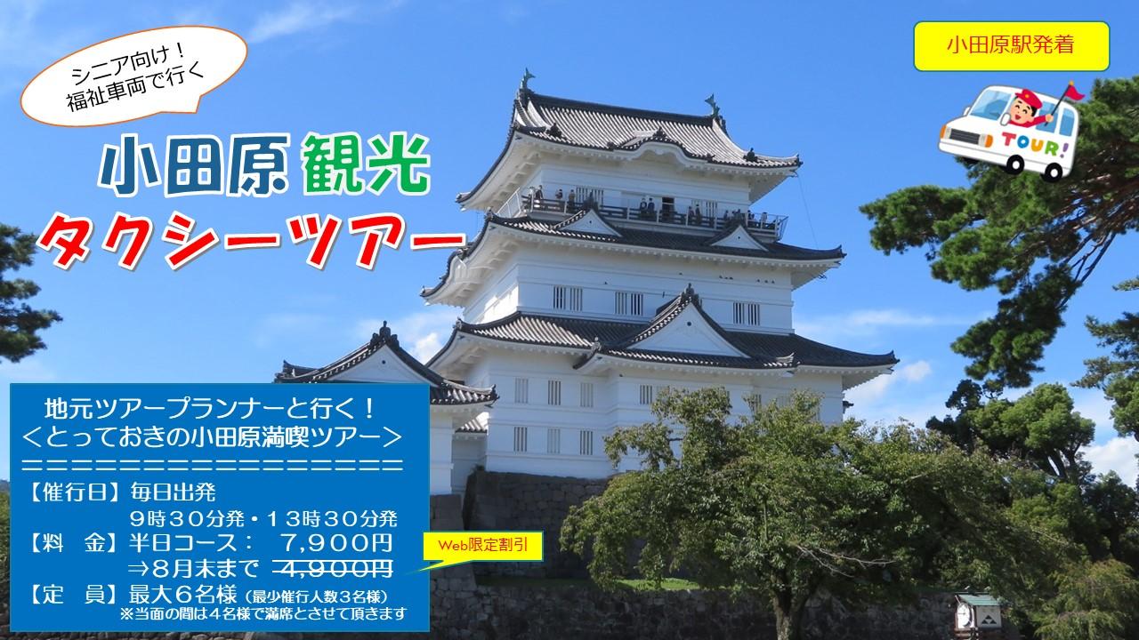 【小田原旅行・観光】地元ツアープランナーと行く!とっておきの小田原ツアー